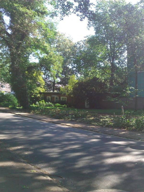 Veränderter Eindruck in der Riensberger Strasse nach der Baumfällung